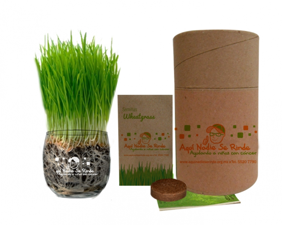 SEMIKIT®Kit Cultivo Wheatgrass - NAT1006